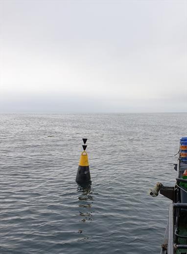Буй морской малый ледовый (БММЛ-18)